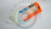 Перезаправляемый картридж (ПЗК) PGI450/CLI451 для Canon PIXMA iP7240 MG5440 без чипа